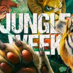 KlaverCasino Jungle Week